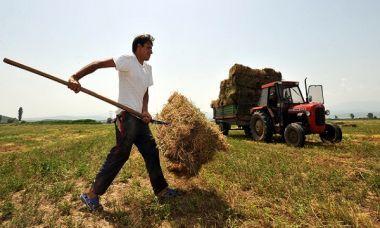 Κομισιόν: Δεν υπάρχουν «κυρώσεις» για καθυστερημένες πληρωμές σε Έλληνες αγρότες!