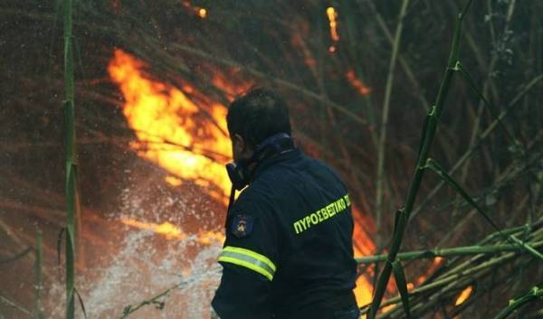 Αλόννησος: 110 στρέμματα στρέμματα δάσους ο απολογισμός της πυρκαγιάς